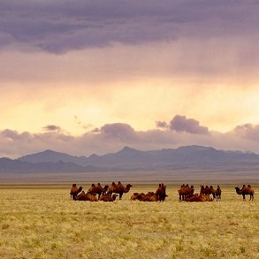 Ulan Bator og Gobiørkenen
