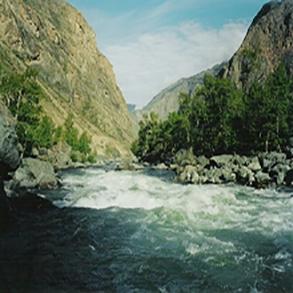 Trekking ved foden af Belukha i Altajbjergene